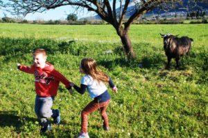 τι8ορεα.γρ παιδια αγροκτημα
